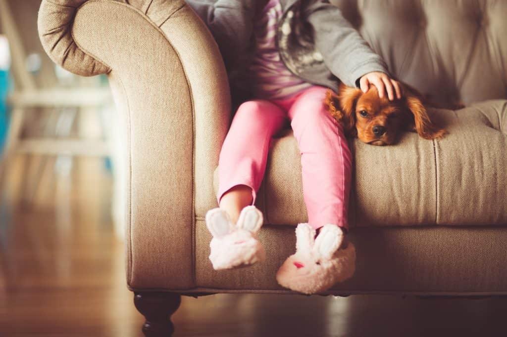 pet, people. pet health, behavior, pet behavior